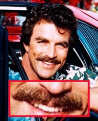 Tom Selleck's Moustache Montage
